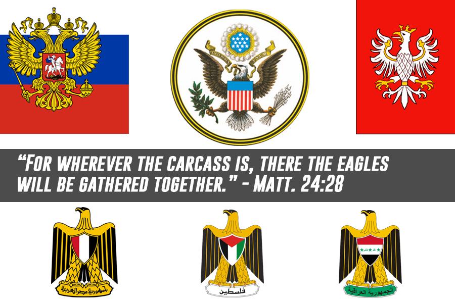 eagles-carcass